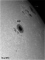 Sunspots.png
