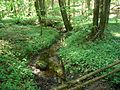 Svente Parish, LV-5473, Latvia - panoramio - alinco fan (2).jpg