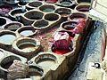Tanneries - Fès (5148726300).jpg