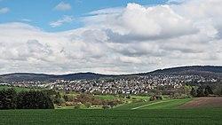 Taunusstein-Bleidenstadt-Hahn-ks01.jpg