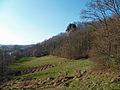 Taurignan-Vieux - Rocher de Roquelaure - 20110306 (1).jpg