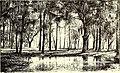 The American garden (1891) (17961222920).jpg