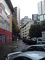 The Dark Back Alleys Of Symonds Street.jpg