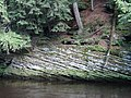 The Dells of the Wisconsin River in June 2015 11.JPG