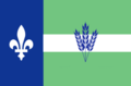The Flag of Pain Court.png