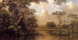 The Great Florida Marsh