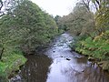 The River Esk at Lealholm - geograph.org.uk - 598190.jpg