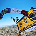 The Tigers Army Parachute Display Team.jpg