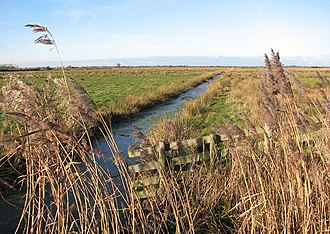 Upton Broad and Marshes - Upton Marshes