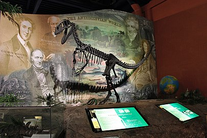 The first discovery of dinosaurs-Dinosaurisle