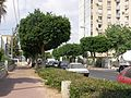 The streets of Ashdod, Israel - panoramio - yfrimer (9).jpg