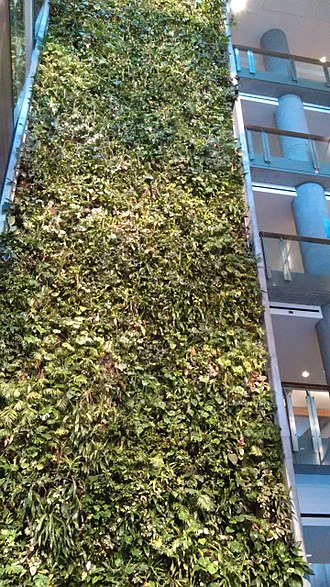 University of Ottawa - The green wall in the Faculty of Social Science building is the tallest living biofilter in North America. The green wall is one example of the University's sustainability projects.