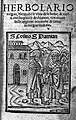 Title page from Herbarius..., 1485 Wellcome L0009529.jpg