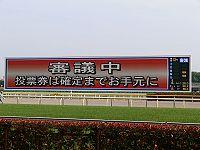 場 東京 競馬