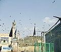 Tomb of Shah Yousuf Gardezi Side View Flying Pigeons.jpg