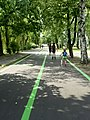 Tor dla rolek park sielecki Sosnowiec.jpg