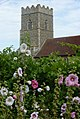 Tower and flowers - geograph.org.uk - 1424490.jpg