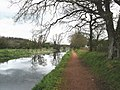Towpath, Grand Western Canal - geograph.org.uk - 1246142.jpg
