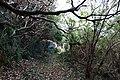 Traces of Toriuchi village in Hachijo-Kojima Island 04.jpg