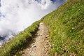 Trail to Ramsjoch.jpg