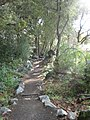 Trail to Wapama Falls along Hetch Hetchy Reservoir - panoramio.jpg
