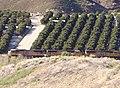 Train in San Timoteo Canyon, Redlands, CA 3-2012 (6836331732).jpg