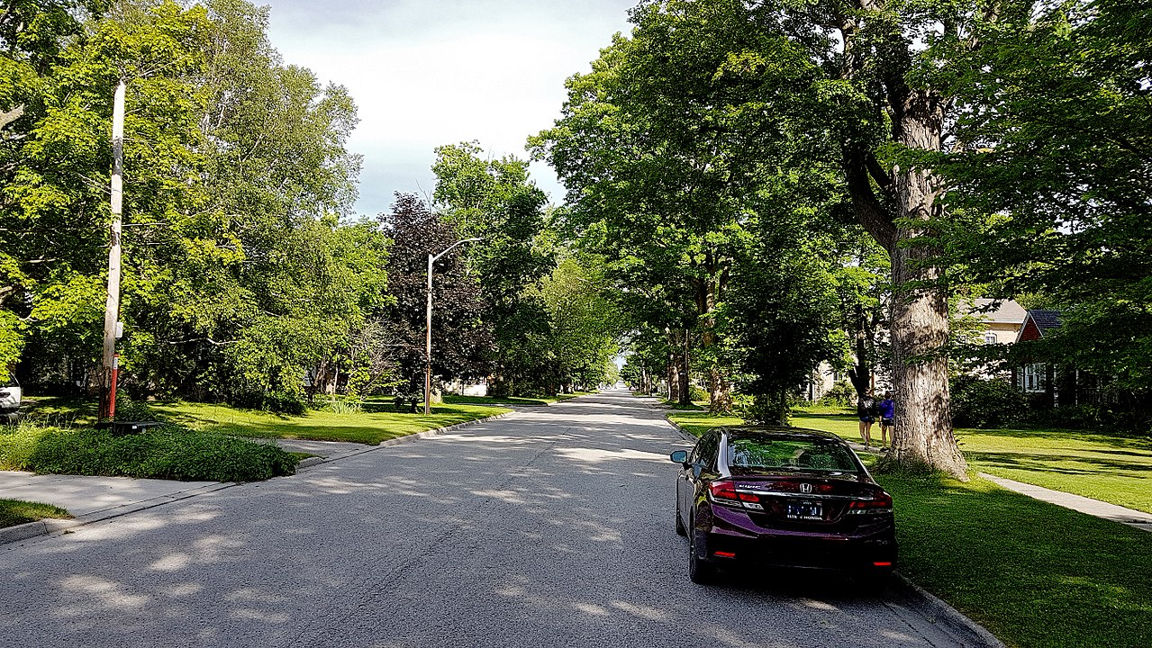 Tree-lined street in Riverdale Toronto. Everything looks so beautiful and sunny. Riverdale has so many of these green-spaces.
