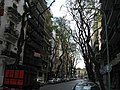 Tree lined street in Buenos Aires.jpg