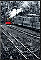 Tren de Usuhaia.jpg