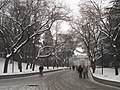 Tsinghua University - snowy path to white gate.JPG