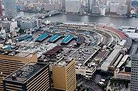 Tsukiji fish market (1).jpg