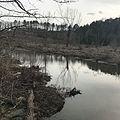 Tuckahoe Creek (Henrico and Goochland Counties, Virginia).jpg