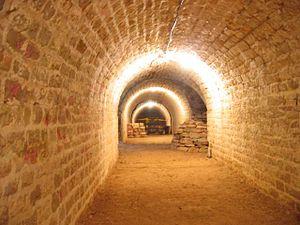 Asnières-lès-Dijon - Image: Tunnel fort