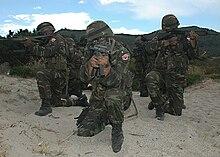 Turkish troops.jpg