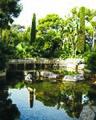 Un jardin à Saint Jean-Cap-Ferrat.jpg