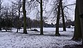 University Park MMB «82.jpg