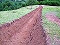 Valea Vinului Maramures 03 2009.JPG