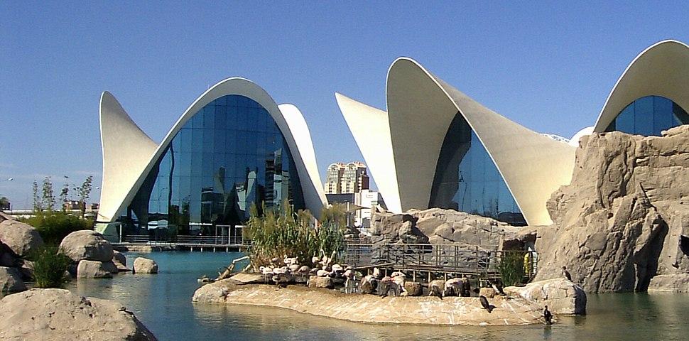Valencia-L'Oceanogràfic2