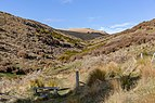 Valley heading to Mt Herbert, Mount Herbert Walkway, New Zealand.jpg