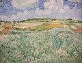 Van Gogh - Ebene bei Auvers 1300251.jpg