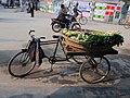 Vegetables on a transport rickshaw in Rajshahi 01.jpg
