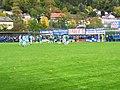 VfB Eichstätt - TSV 1860 München 3.10.2017 5.jpg