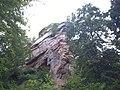 Vieux château de Windstein (67).jpg