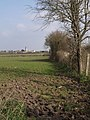 View beside disused railway, Lyng - geograph.org.uk - 376610.jpg