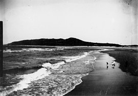 View of Bilinga Beach, Gold Coast, circa 1900.JPG