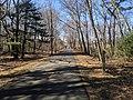 W, Minuteman Bikeway, Bedford MA.jpg
