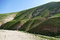 Wadi-Makukh-615.jpg