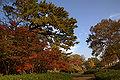 Wakayama Park07n4592.jpg