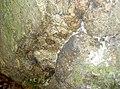 WaldmuenchenKatzbachFelsen 10.jpg