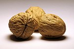 Walnuts by RustedStrings.jpg